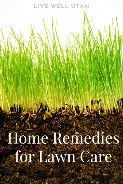 Home Remedies for Lawn Care