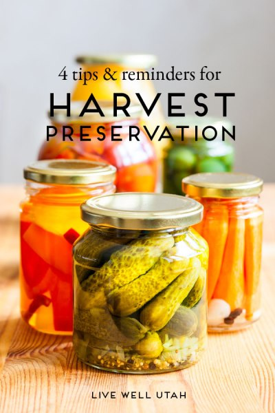 4 tips and reminders for harvest preservation
