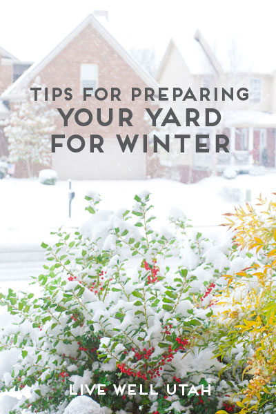 Tips for Preparing Your Yard For Winter