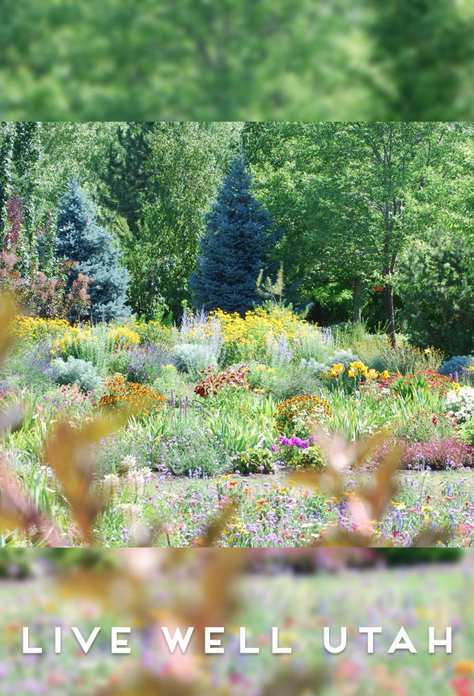 New Utah Public Gardens Website Live Well Utah